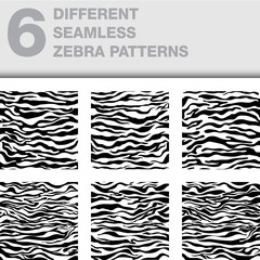 6 different seamless patterns / zebra skin texture