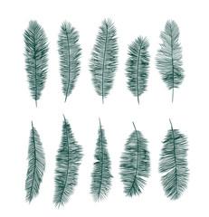 palm leaves decoration