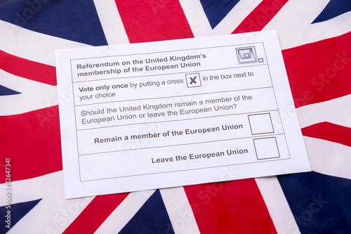 referendums in the uk essay