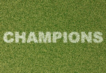 Champions - grass letters on football field 2