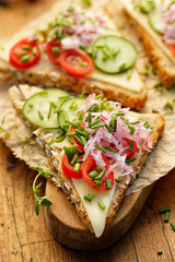 Vegetarian sandwich with cheese, cherry tomatoes, radish, cucumber and fresh herbs on rustic wooden table