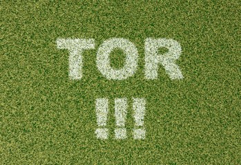 TOR - grass letters on football field