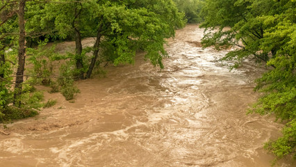 Stormy river flooding the forest