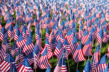 Field of American flags on display for Memorial Day or July 4th