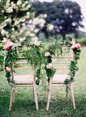 Chairs decorated with fresh flowers at wedding