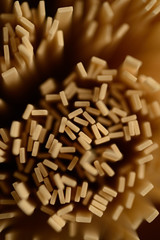 Dried noodles, close up