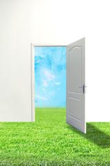 Open door and green meadow with blue sky