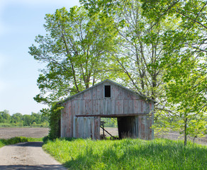 Old barn in the farm fields