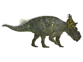 Pachyrhinosaurus Side Profile - Pachyrhinosaurus was a ceratopsian herbivorous dinosaur that lived in the Cretaceous Period of Alberta, Canada.