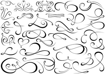 Calligraphic Shapes Collection - Design Elements Illustration, Vector