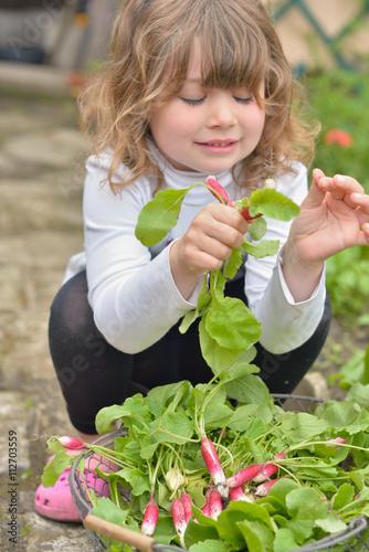 jolie jeune fille ramassant des radis dans un jardin stock photo and royalty free images on. Black Bedroom Furniture Sets. Home Design Ideas