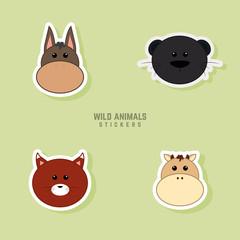 Cute Animals Face