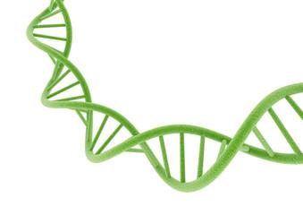 Green DNA.