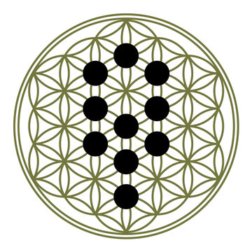 Flower of life, 10 Sephirot, Tree of life, Kabbalah
