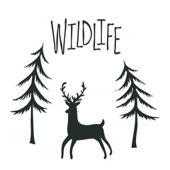 Wildlife print design with deer and pine trees. Vector outdoor landscape illustration.