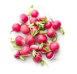 Fresh radishes vegetable.