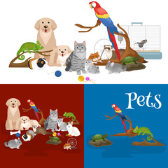 Home pets set, cat dog parrot goldfish hamster, domesticated animals