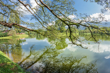 Reflection of Taiping Lake