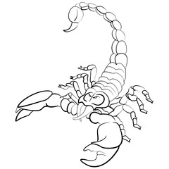 Hand drawn astrological zodiac sign Scorpion