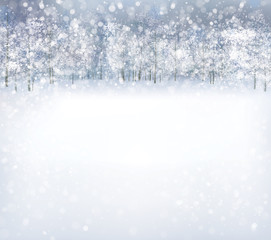 Vector  winter scene with forest background.