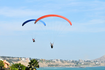 Parachutes flying by the ocean