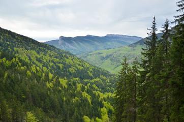 Vu sur l'Outhéran (Chartreuse / Savoie)