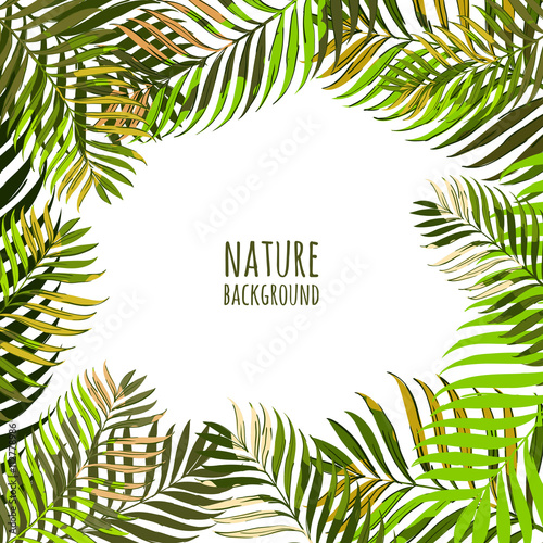 Vector Frame With Coconut Palm Leaves Floral Summer Background Tropical Green Hand