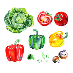 Premium quality watercolor icons set of various healthy food, herbs, mushrooms and vegetables. Hand drawn. Flat lay objects isolated on white background.