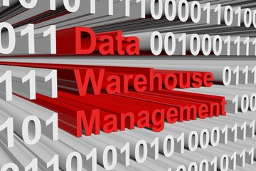 data warehouse management in the form of binary code, 3D illustration
