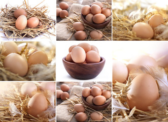 collage of eggs in the straw, bowl, in a linen sack ...