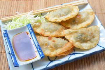 Japanese gyoza dumplings