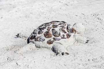 Sand Sculpture of a Turtle on a Beach