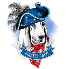 Portrait of a dog wearing a pirate's hat and a bandana with the image of a skull. Vector illustration.