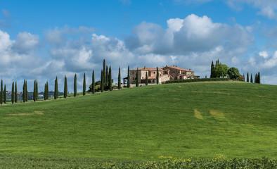 Foto op Canvas Toscane schönes landhaus in der Toskana mit Zypressenallee
