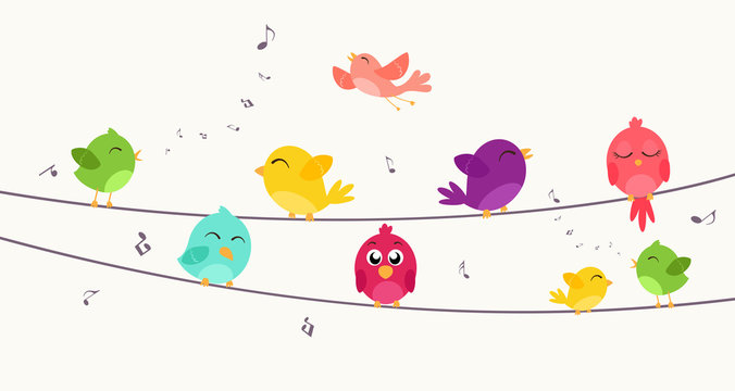 Colorful birds sitting on wire
