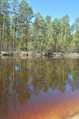 Russian forest river in spring.