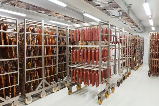 Fresh traditional sausages ready for drying in a smokehouse of a meat processing industry