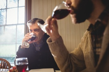 Portrait of hipster and mature man drinking red wine