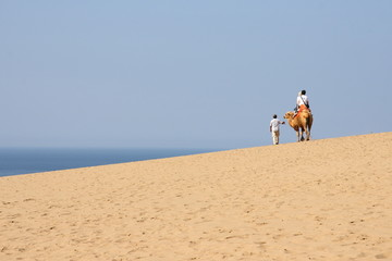 "Tottori Sand Dunes in JAPAN (Japan's largest dune, a state's designated natural monument ""Tottori Sakyu"" ) - Riding on a camel"