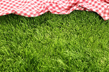 picnic cloth on meadow Wall mural