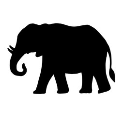 Vector of Abstract Silhouette elephant