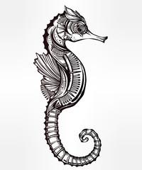 Vector seahorse, line art.