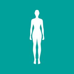 Woman body outline in white. Vector illustration