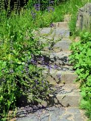 Außentreppe zugewachsen  - Wendeltreppe aus Naturstein - Gartentreppe