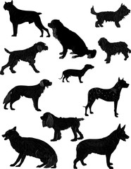 eleven black isolated dogs sketches