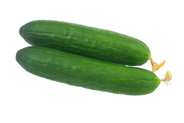 Cucumber long green on white