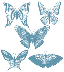 vector set of hand-drawn butterflies