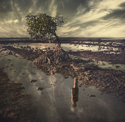 lonely tree with female reflection in water,photo art