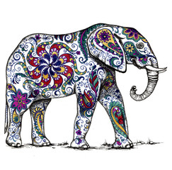 Indian elephant decorate floral pattern