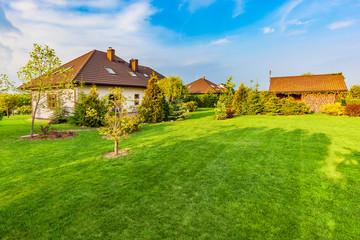 Backyard of a family house. Spacious landscaped garden with green mown grass